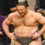 栃ノ心、初場所、筋肉、筋肉力士ランキング