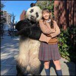【星星】パンダは何者&本物?見た目が怖い!どんな人が入っている?